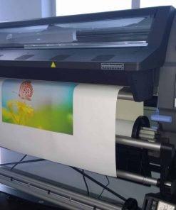 Canvas 100% Cotton Prints