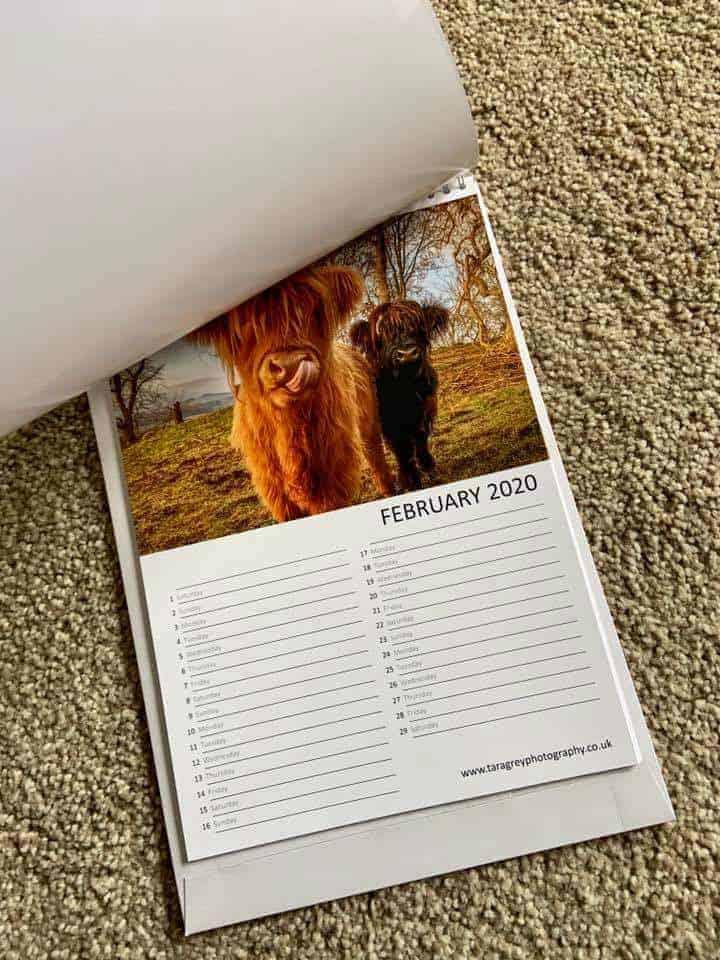Calendars Printed for Tara Grey Photography
