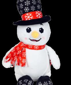 Dr Diddlington The Snowman