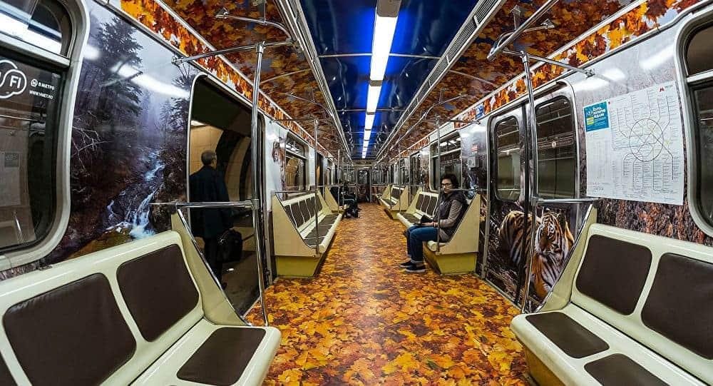 Striped Train Internal Graphics